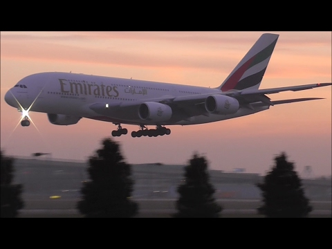 Foggy Evening Planespotting at London Heathrow Airport - 30/10/16