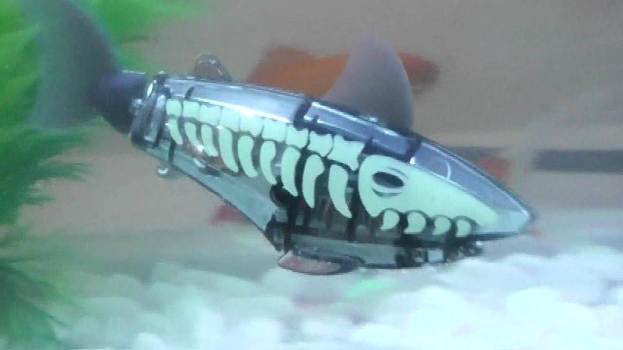 Shark Attack Toys 101