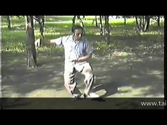 Tian Jian Hua - Tai Chi style Chen Xinjia Erlu  [陈氏太极拳新架 Taijiquan style Chen]