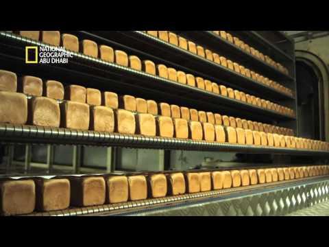 المراعي   ناشيونال جيوغرافيك   خبز توست لوزين [ وثائقي ] ناشيونال جيوغرافيك في مصنع لوزين لانتاج خبز التوست [ وثائقي ] ناشيونال جيوغرافيك في مصنع لوزين لانتاج خبز التوست hqdefault