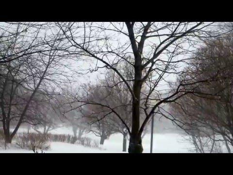 Snow Storm -Québec City. 2016/02/02
