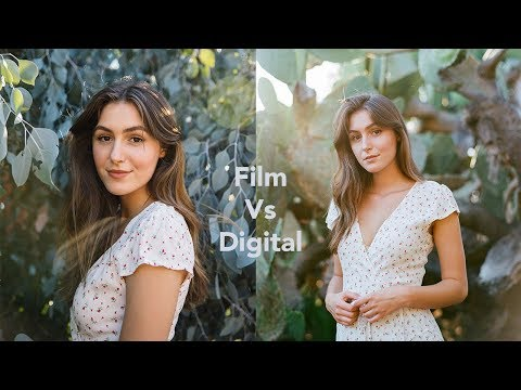 Medium Format Film Vs. Digital Photography