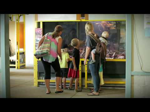 video:Seymour Marine Discovery Center at Long Marine Lab