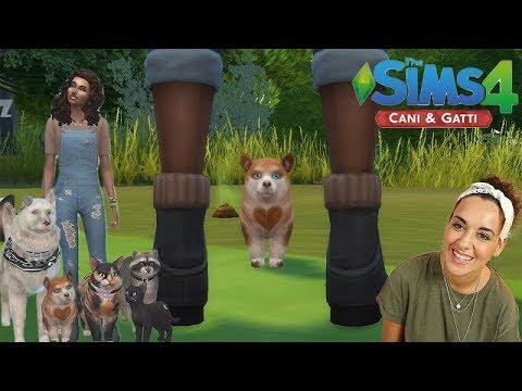 The Sims 4 CANI & GATTI #3 - COMPRIAMO LA CLINICA VETERINARIA!!