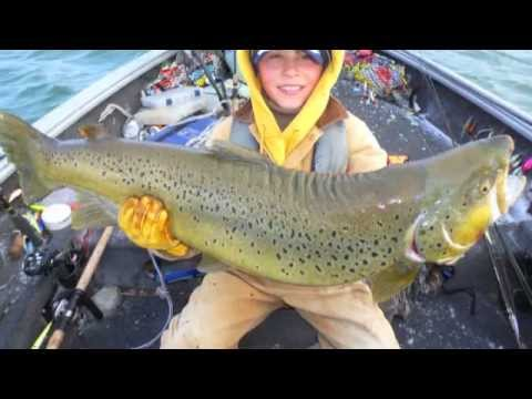 New IGFA world record Brown Trout
