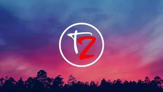 Tonyz Altrx Wonderland NoCopyrightSong.mp3