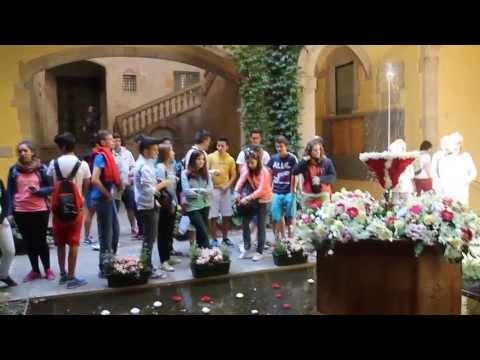 Ou Com Balla Barcelona Palau del Lloctinent Corpus 2013  irBarcelona