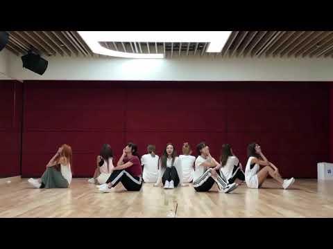 【Dance Mirrored】 TWICE - Dance The Night Away (short Ver.)