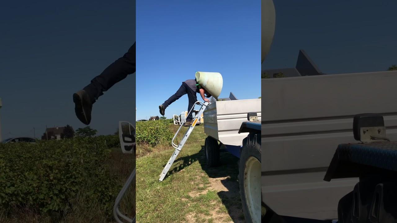 Download First day of harvest for Domaine Vincent Carême.