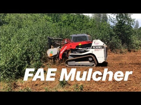 Takeuchi TL12 With FAE forestry mulcher