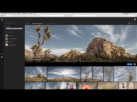 Sharing Web Photo Galleries from Lightroom Web