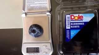Largest Blueberry in the World