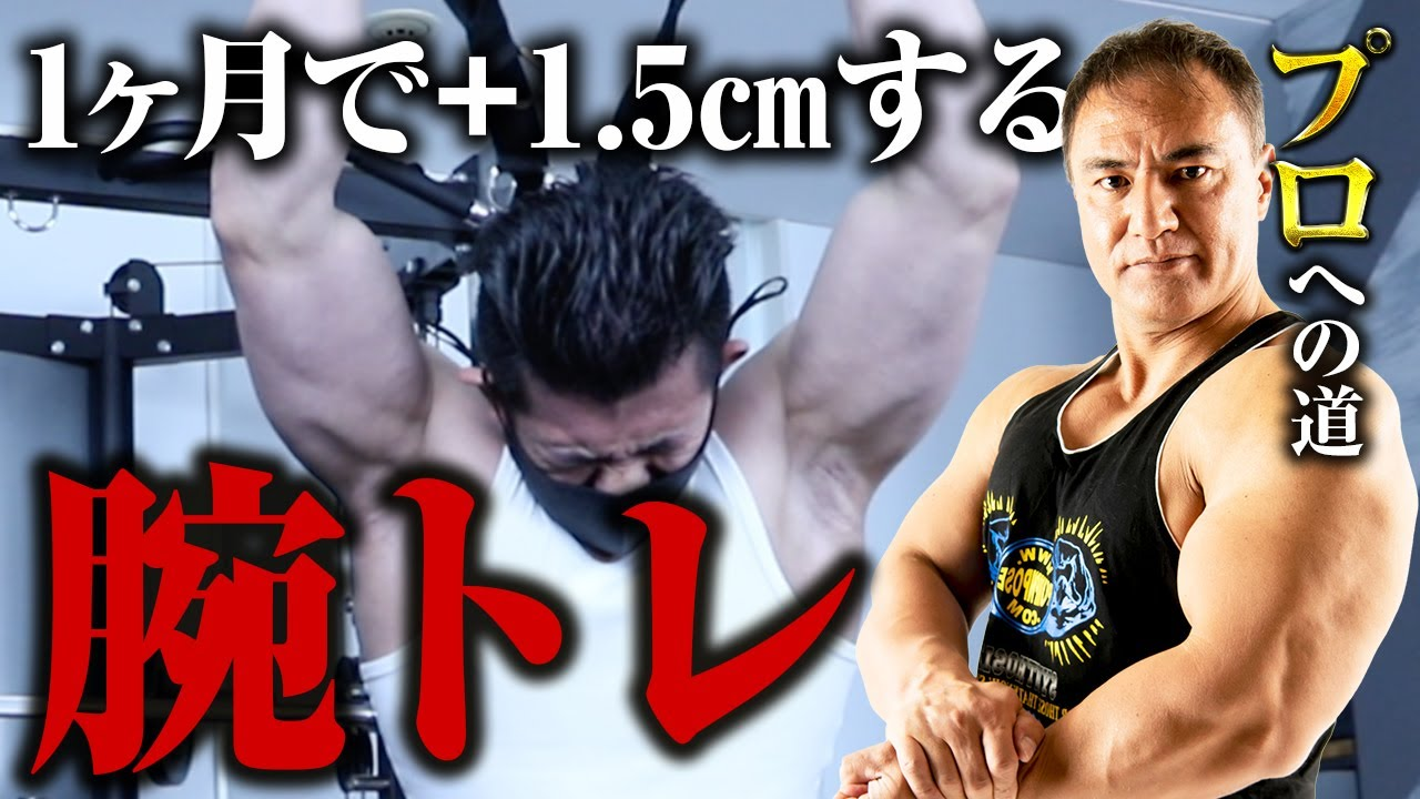【プロへの道】腕を太くするために必要な軽い重量でのハイレップストレーニング!腕トレphase3【腕トレ】