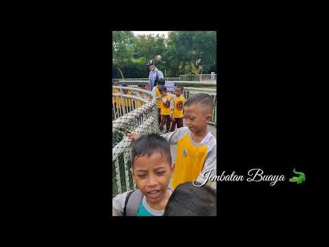 tk-suluh-surabaya-#predatorfunpark-#malang-#piknik