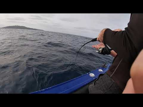 Norfolk Island Fishing And Diving