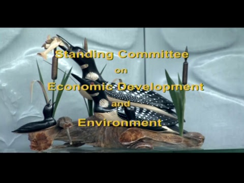 The Standing Committee on Economic Development and Environment