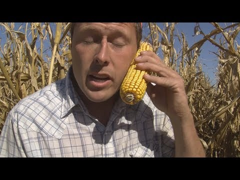 iPhone I Like You #ImAFarmer (Taylor Swift - Look What You Made Me Do) PARODY