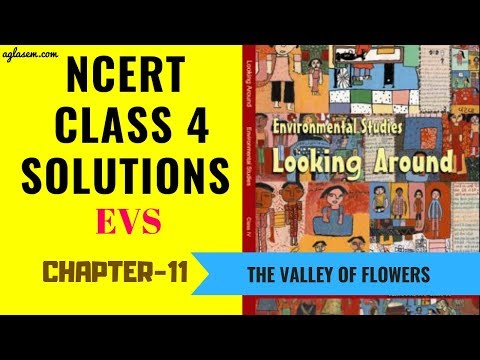 NCERT Solutions Class 04 EVS  Chapter 11: The Valley Of Flowers  | Aglasem Schools