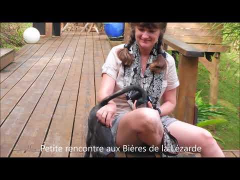 Guadeloupe Resto, Marché, Plage