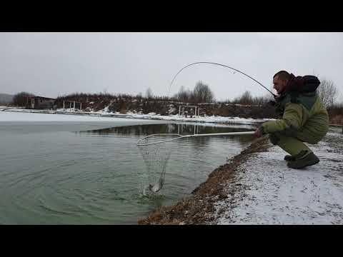 Платная рыбалка во Власово.