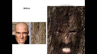 Brighton High School Web Design Student Photoshop Portfolio