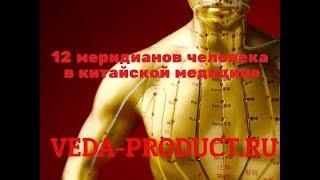 12 меридианов человека в китайской медицине