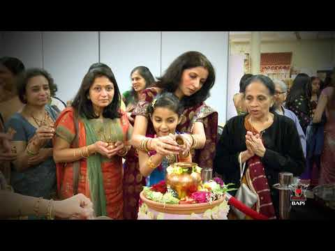 Diwali & Annakut 2011, Edison