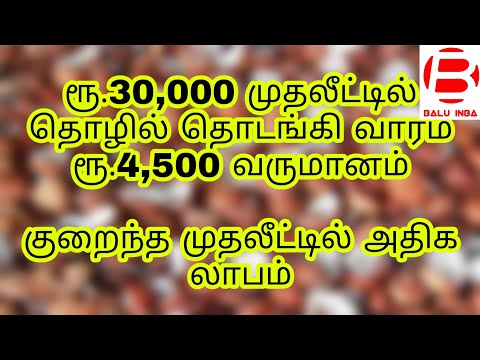Business ideas in tamil/ low investment business/ tamil business ideas/ Balu INBA