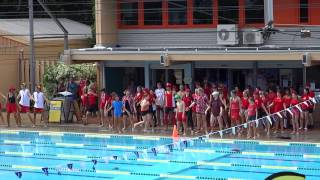 Phoenix Swimming Carnival Opening Ceremony 2014 - Pimlico State High School
