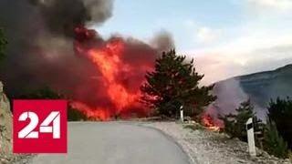 Смотреть видео В Дагестане третьи сутки полыхают высокогорные леса - Россия 24 онлайн