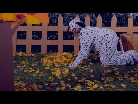 benebone-dog-treats- -chewy