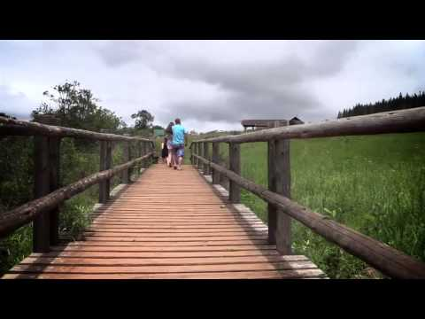 Mpumalanga: Sabie, Graskop, Hoedspruit & surroundings