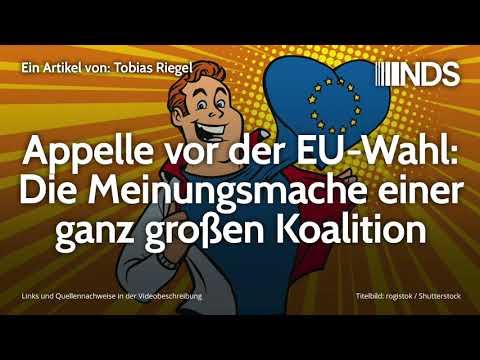 Appelle vor der EU-Wahl: Die Meinungsmache einer ganz großen Koalition | Tobias Riegel