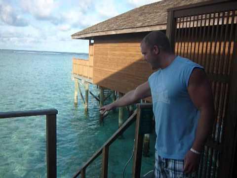 Meeru Island Resort And Spa Avis