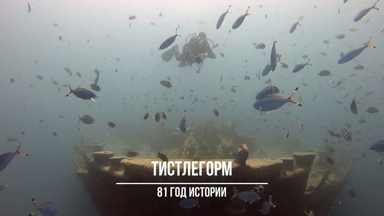 ТИСТЛЕГОРМ, 81 ГОД ИСТОРИИ