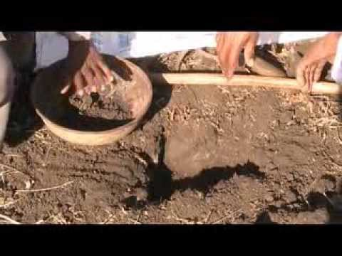 Soil Sample Collection For Soil Testing Hindi ACCESS M.P