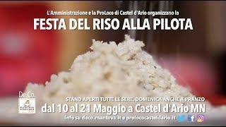 Festa del Riso alla Pilota di Castel d'Ario (2018)