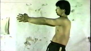 How To Relax In Wing Chun - Wing Chun Internal Training Exercise 3