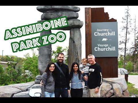 ASSINIBOINE PARK ZOO & ST. VITAL PARK | VISITA DA FAMILIA!