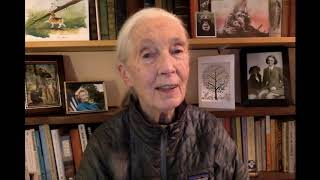 A Message from Jane Goodall