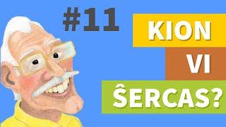 sherco11