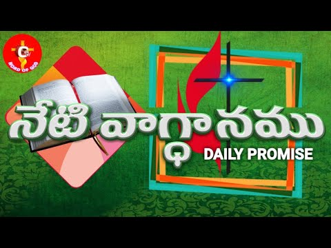 Today's Promise 15-12-2018