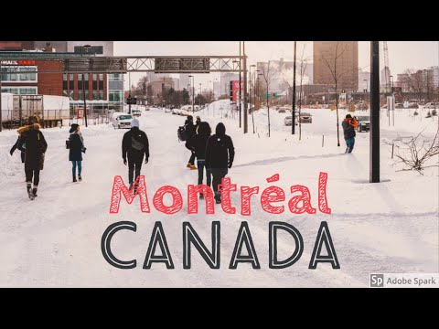Montreal, Canada | Road Trip on a university student budget | The Big Saw Vlogs