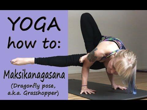 Yoga How to: Maksikanagasana, Dragonfly/Grasshopper