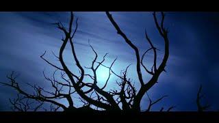Смотреть клип песни: Rotting Christ - Cine iubeşte şi lasă