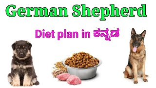 German Shepard diet plan in Kannada