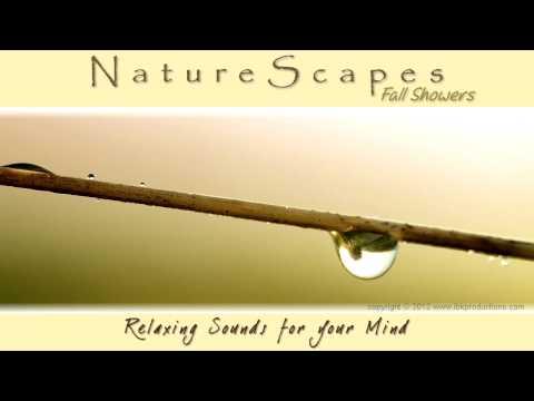 🎧 RELAXING RAIN SHOWER SOUNDS for Sleep, Meditation, White Noise & Tinnitus... Nature Sounds