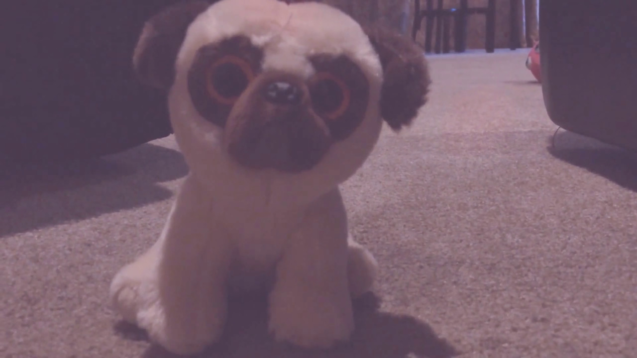 Try tip death the lost pug sad music - YouTube