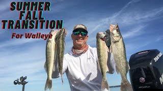 Summer To Fall Transition for Walleye