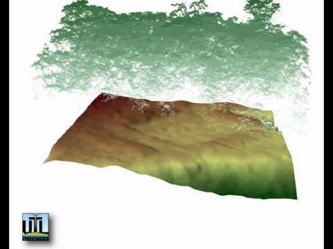 UTL Scientific LLC - LIDAR animation of Honduran jungle